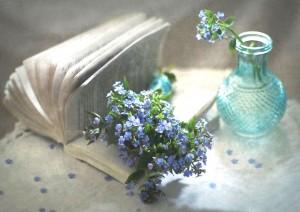 minimal-blu[1]